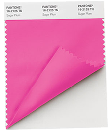 PANTONE Fashion + Home Nylon Brights Swatch Card